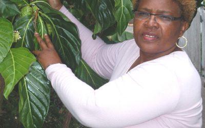 Medisina di yerba den Karibe, Uso di remedi di kas na Saba
